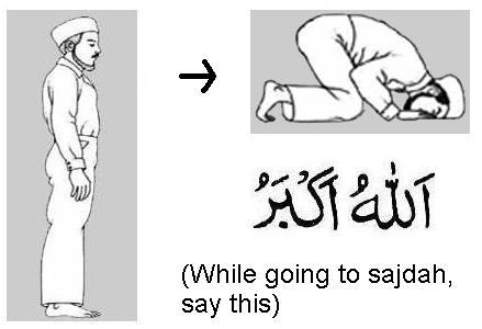 Step 8 (Takbeer)